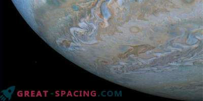 Dolphin in the clouds of Jupiter