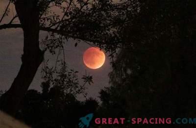 De verbluffende Blood Moon heeft de wereld veroverd: foto