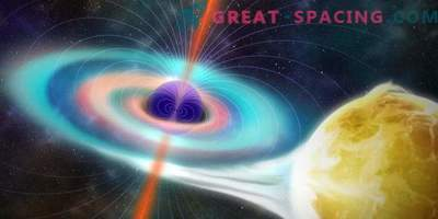 The magnetism of black holes was weaker than